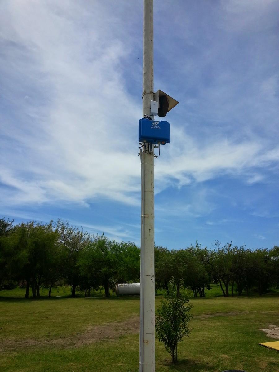 repe-campo azul